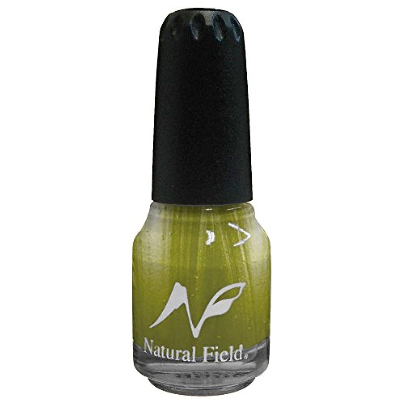 メカニックかび臭い扱いやすいNatural Field ネイルポリッシュ パールカラー 2051 R14 12ml