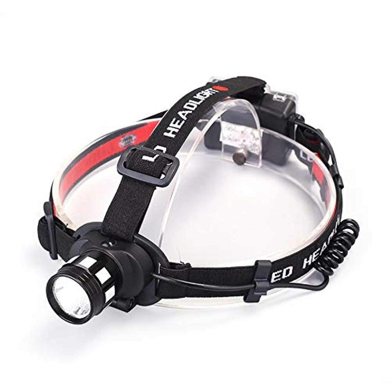 飲み込む登録民主主義(Spessn)LEDヘッドライト ヘッドライト センサー機能 超高輝度 1200ルーメン IPX6防水 小型軽量ヘッドランプ モード交換可能  登山 夜釣り アウトドア作業 アウトドアに適用 角度調節可能 (01)