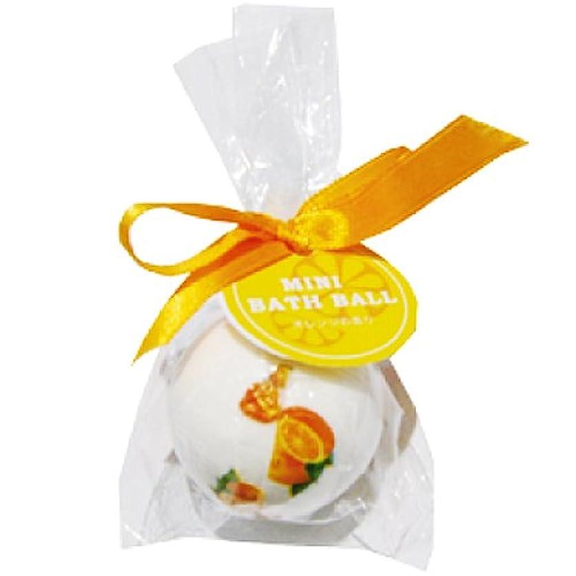 妊娠したチーター同化するチャーリー ミニバスボール オレンジの香り 30g
