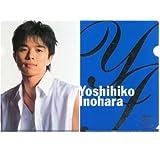 井ノ原快彦 A4 クリアファイル 「V6 10th Anniversary Concert 2005 musicmind」 ジャニーズグッズ