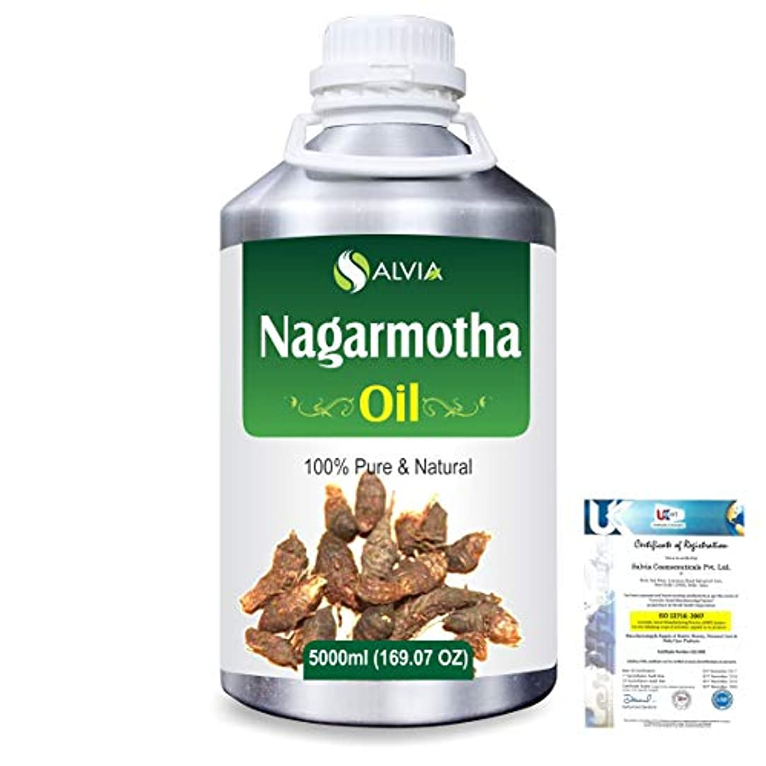決めます教科書隣人Nagarmotha (Cyprus scariosus) 100% Natural Pure Essential Oil 5000ml/169fl.oz.