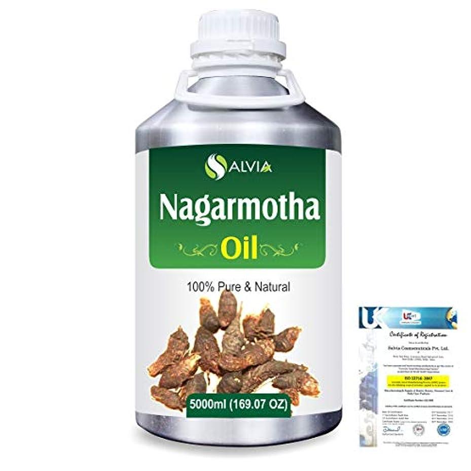 団結するテンションシャッターNagarmotha (Cyprus scariosus) 100% Natural Pure Essential Oil 5000ml/169fl.oz.