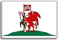 Wales, Cardiff city flag fridge magnet - ?????????
