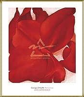 ポスター ジョージア オキーフ Red Cannas 額装品 アルミ製ハイグレードフレーム(ゴールド)