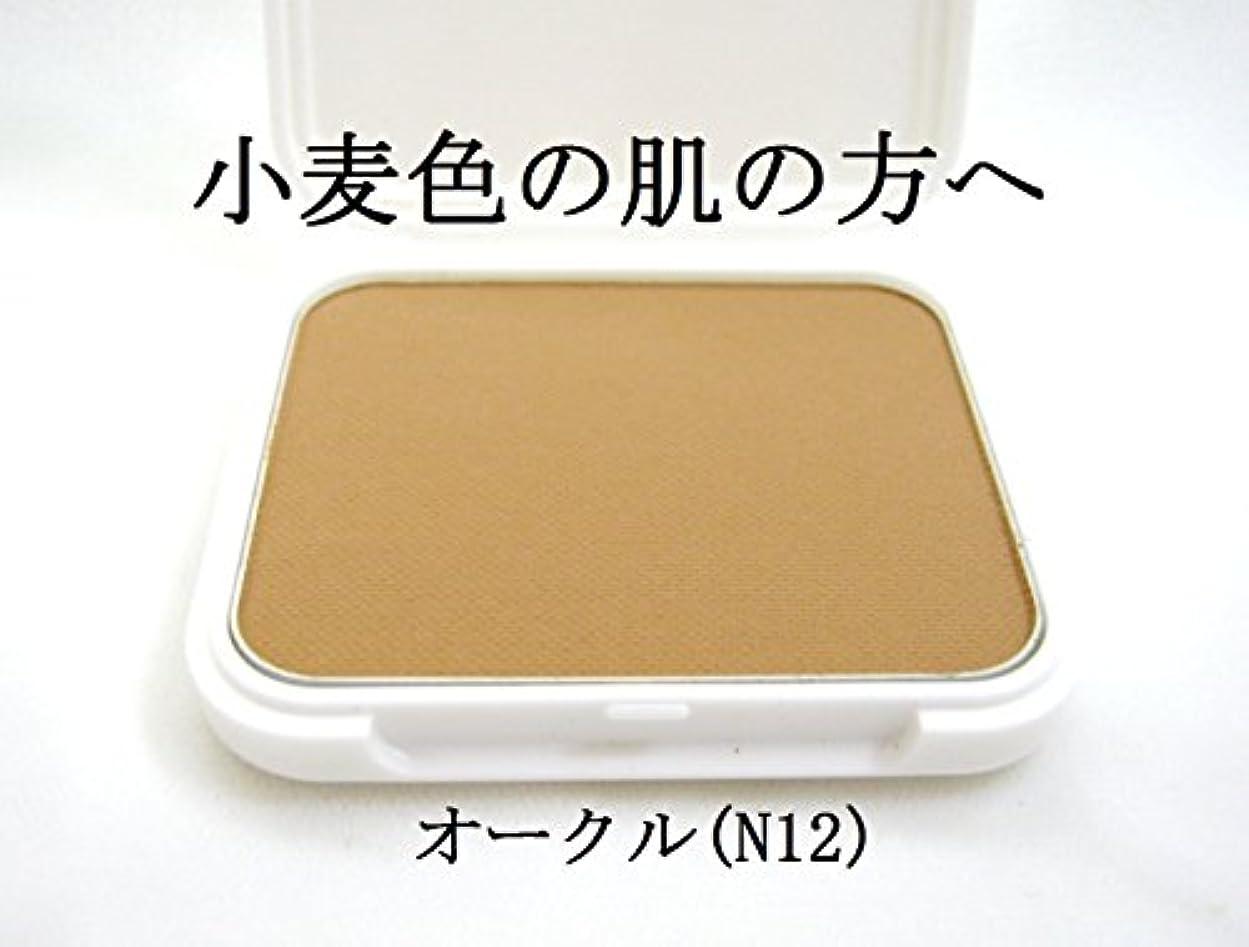 最も遠いタイピスト料理IR アイリベール化粧品 パウダリーファンデーション リフィル 13g (N12)