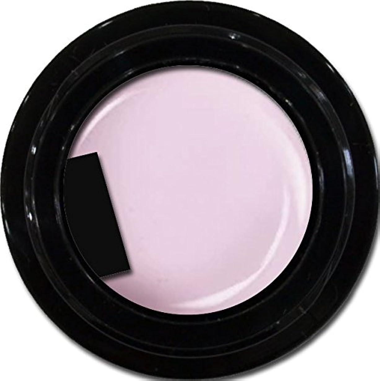 バーガー暴徒言い直すカラージェル enchant color gel M501 ChiffonLavender 3g/ マットカラージェル M501 シフォンラベンダー 3グラム