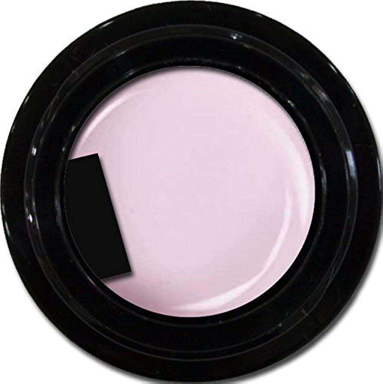 哺乳類扱いやすい若いカラージェル enchant color gel M501 ChiffonLavender 3g/ マットカラージェル M501 シフォンラベンダー 3グラム