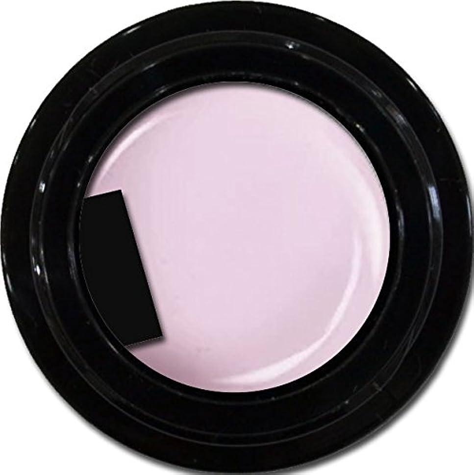 キリスト保存リールカラージェル enchant color gel M501 ChiffonLavender 3g/ マットカラージェル M501 シフォンラベンダー 3グラム
