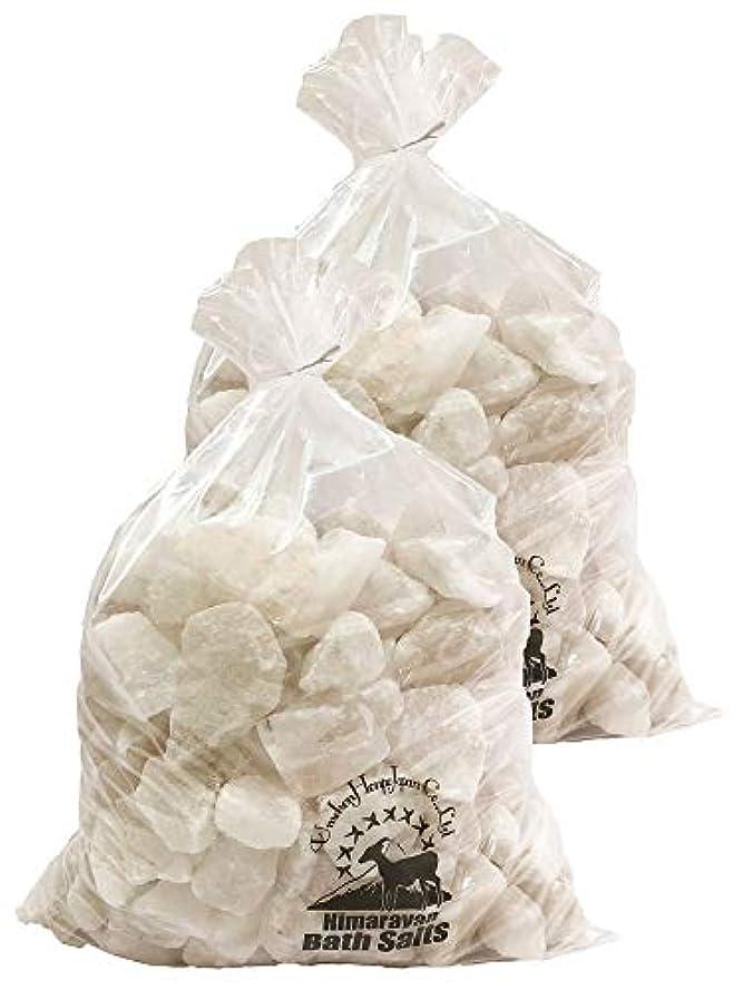 決済生息地扇動ヒマラヤ岩塩 バスソルト ホワイト ブロック 20kg