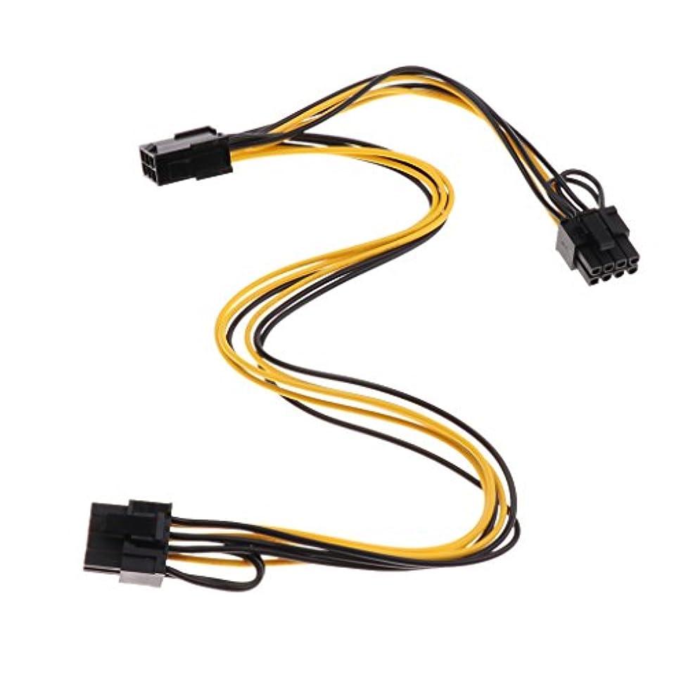 九月明らか採用するPerfk PCI-E 6ピン/ 2x 6 + 2ピン(6ピン/ 8ピン) ビデオカード拡張ケーブル オスコネクタ