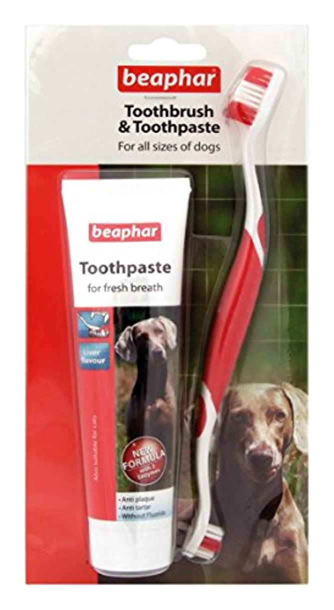 ウェブあいにく奇妙なBeapharどのサイズのワンちゃんにも使える歯ブラシ&歯みがき レバー味 歯石防止効果 (並行輸入品)