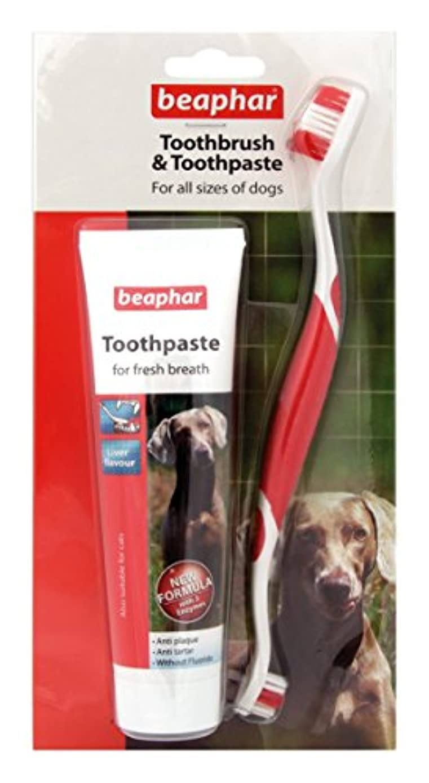 残酷鷲残酷Beapharどのサイズのワンちゃんにも使える歯ブラシ&歯みがき レバー味 歯石防止効果 (並行輸入品)