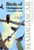 Birds of Madagascar: A Photographic Guide