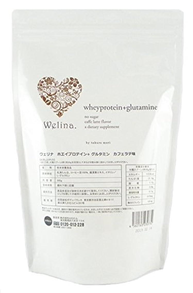 メディアチューインガム整理するウェリナ ホエイプロテイン+グルタミン カフェラテ味 500g