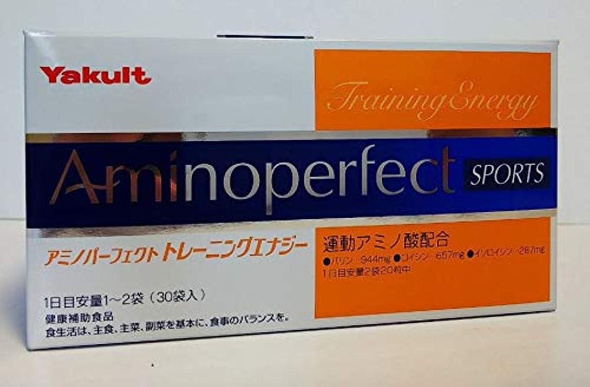 再集計摂動脊椎アミノパーフェクト トレーニングエナジー(6箱セット)