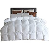 lesnncierダウン代替comforter-all seasons-hypoallergenic-plushマイクロファイバーfill-white-allサイズ クイーン HQB-Q2