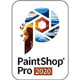 PaintShop Pro 2020 半額キャンペーン版  (最新)|win対応|ダウンロード版