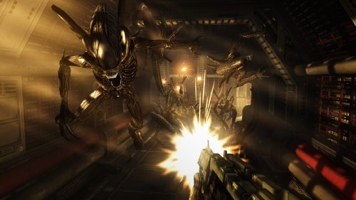 Aliens Vs Predator (PC) (輸入版)