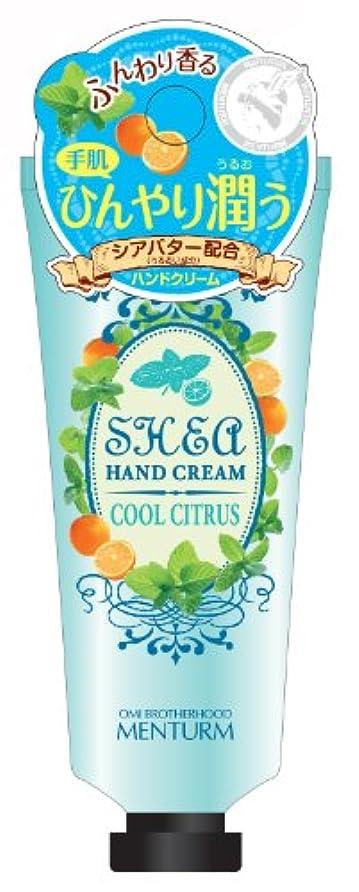 才能初期のつまずくメンターム シアハンドクリーム クールシトラス 35g