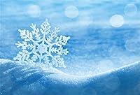 Qinunipoto クリスマス Merry Christmas 写真撮影用 背景布 背景 布 写真 摄影 撮影用 人物撮影 アイス 布バック 背景シート 写真館 撮影スタジオ用 パーティー ポリエステル 洗濯可 2.5x1.5m