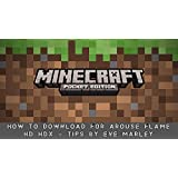 Minecraft Diversion: How to Download for Arouse Flame HD HDX + Tips (English Edition)