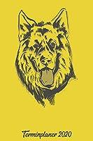 Terminplaner 2020: Wochenplaner zum notieren, organisieren und planen ca. DIN A5 6x9. Kalender / Terminkalender / Monats- / Tagesuebersicht / Kontakt- / Geburtstags listen / Design : Hund Schaeferhund Hundefan