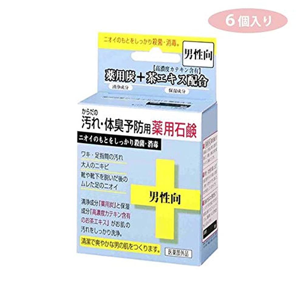 第二に病的竜巻CTY-SM 6個入り からだの汚れ?体臭予防用 薬用石鹸 男性向き