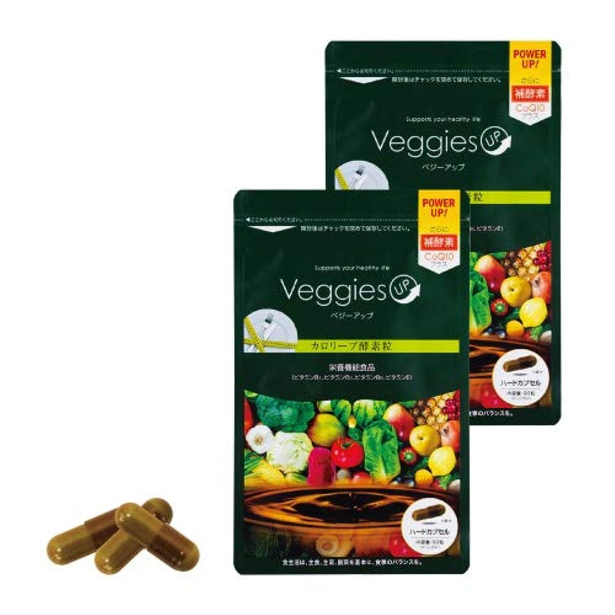 芝生照らす支払いベジーアップ酵素粒カロリーブ 93粒 2袋セット ダイエット 酵素サプリ 酵素ダイエット サラシア コエンザイムQ10 竹炭