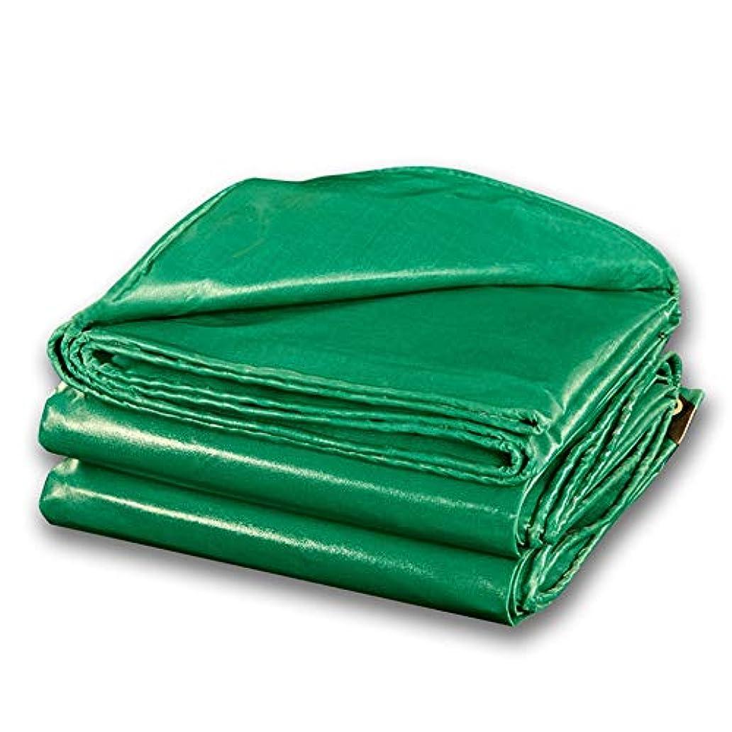 アンペア家畜一目LIXIONG オーニング屋外の 日焼け止め 防水シート 酸化防止 アンチUV PVC 防雨布、 16サイズ (色 : 緑, サイズ さいず : 2.8X3.8m)