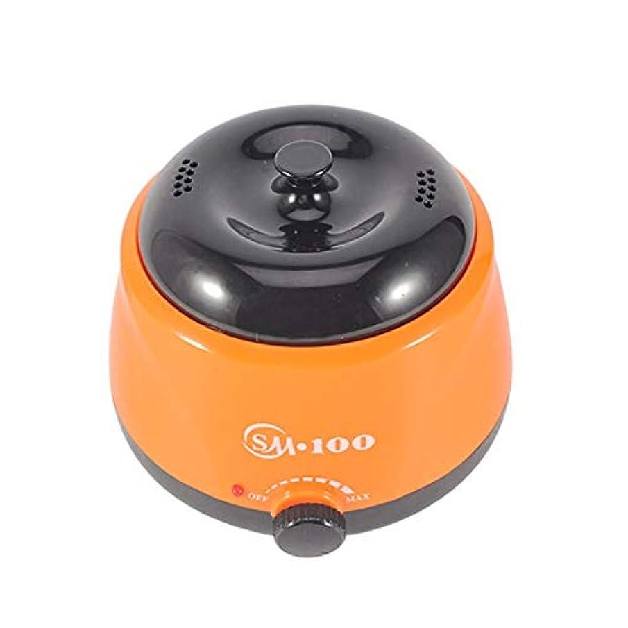 サリーレイ蒸し器女性と男性のための可変温度ワックスマシン、多機能ホームワックスがけと脱毛のための専門の電気ワックスウォーマーヒーターメルター