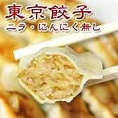 東京餃子(ニラ・にんにく無し)1パック18個入り(冷凍餃子)