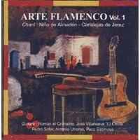 Arte Flamenco Vol.1