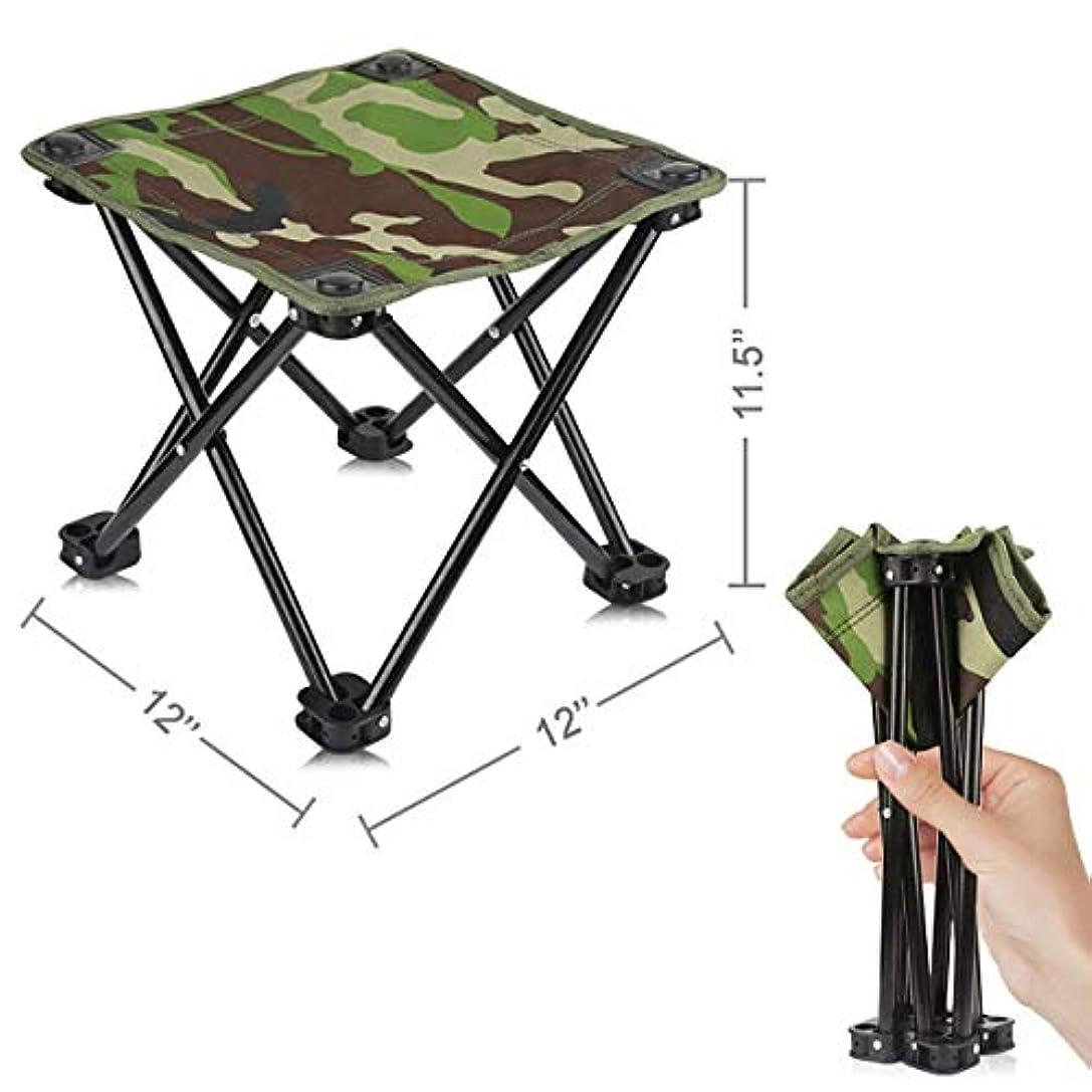 見捨てられた間隔臨検Mini Portable Folding Stool,Folding Camping Stool,Outdoor Folding Chair Slacker Chair for BBQ,Camping,Fishing,Travel,Hiking,Garden,Beach,600D Oxford Cloth with Carry Bag 12