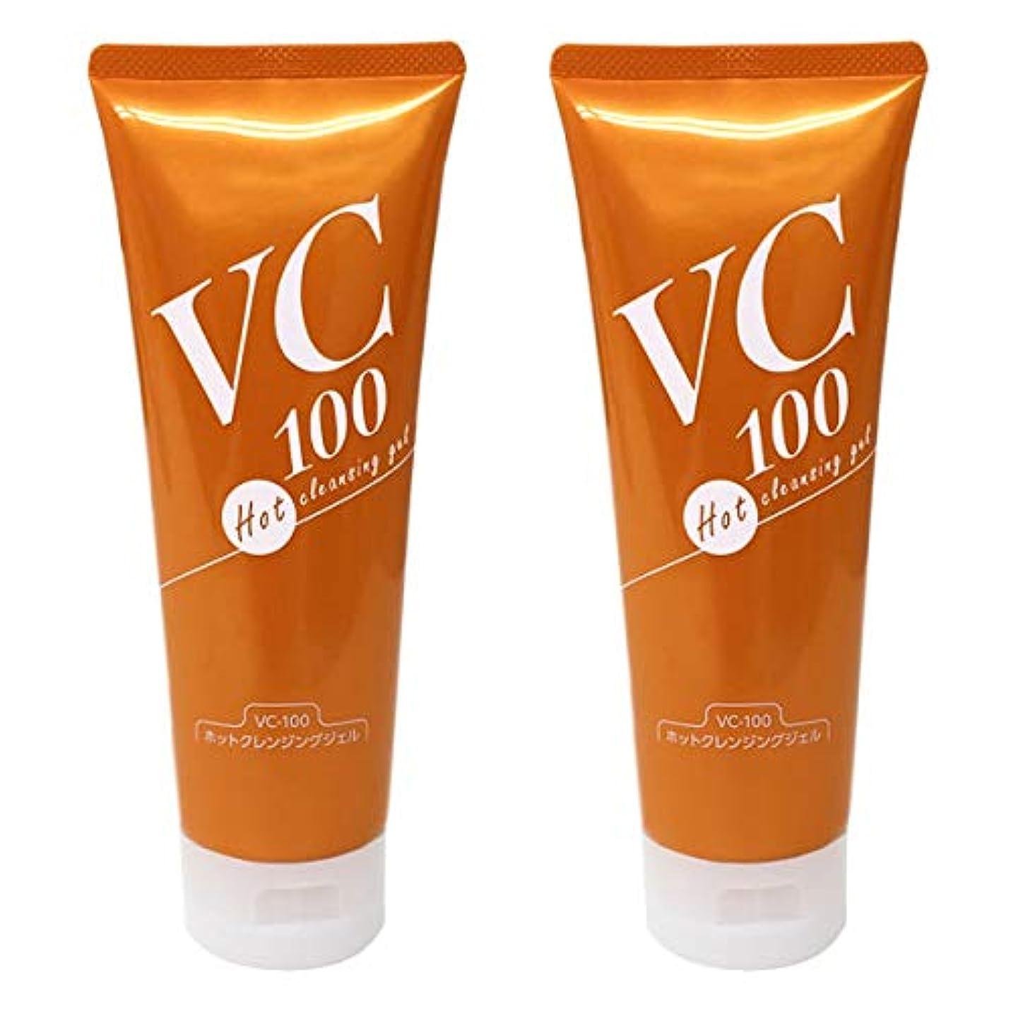 ダニビタミン知恵VC-100ホットクレンジングジェル200g 高浸透型ビタミンC誘導体配合温感クレンジングジェル (2本セット)