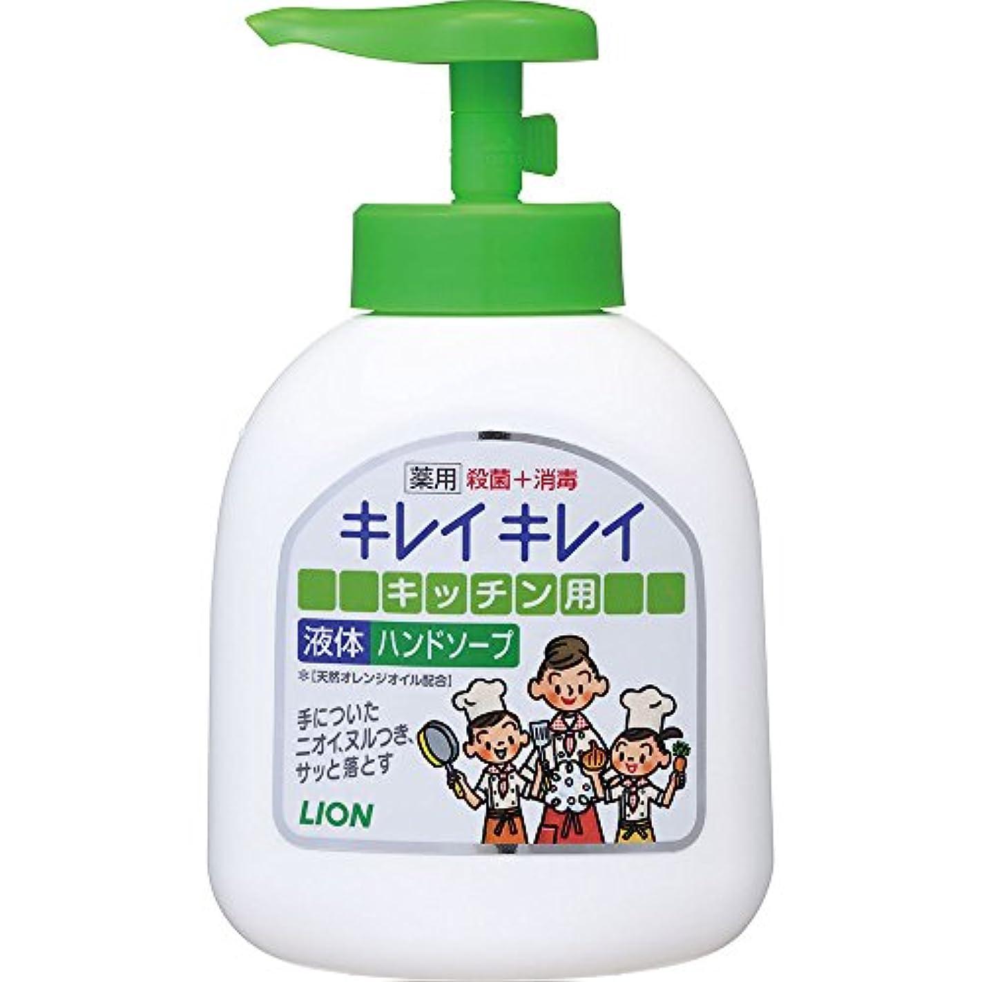 主婦収縮エールキレイキレイ 薬用 キッチンハンドソープ 本体ポンプ 250ml (医薬部外品)
