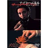 アブラハム渓谷 [DVD]