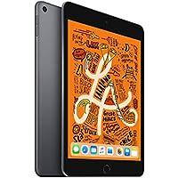 iPad mini Wi-Fi 256GB - スペースグレイ