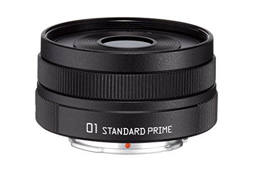 PENTAX 標準単焦点レンズ 01 STANDARD PRIME グレイニーブラック Qマウント 23307