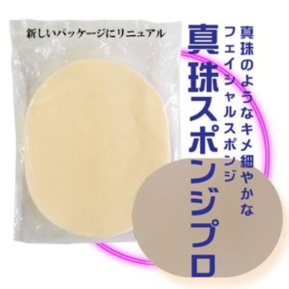 篭スリチンモイ軽食真珠スポンジ プロ 10枚入りセット