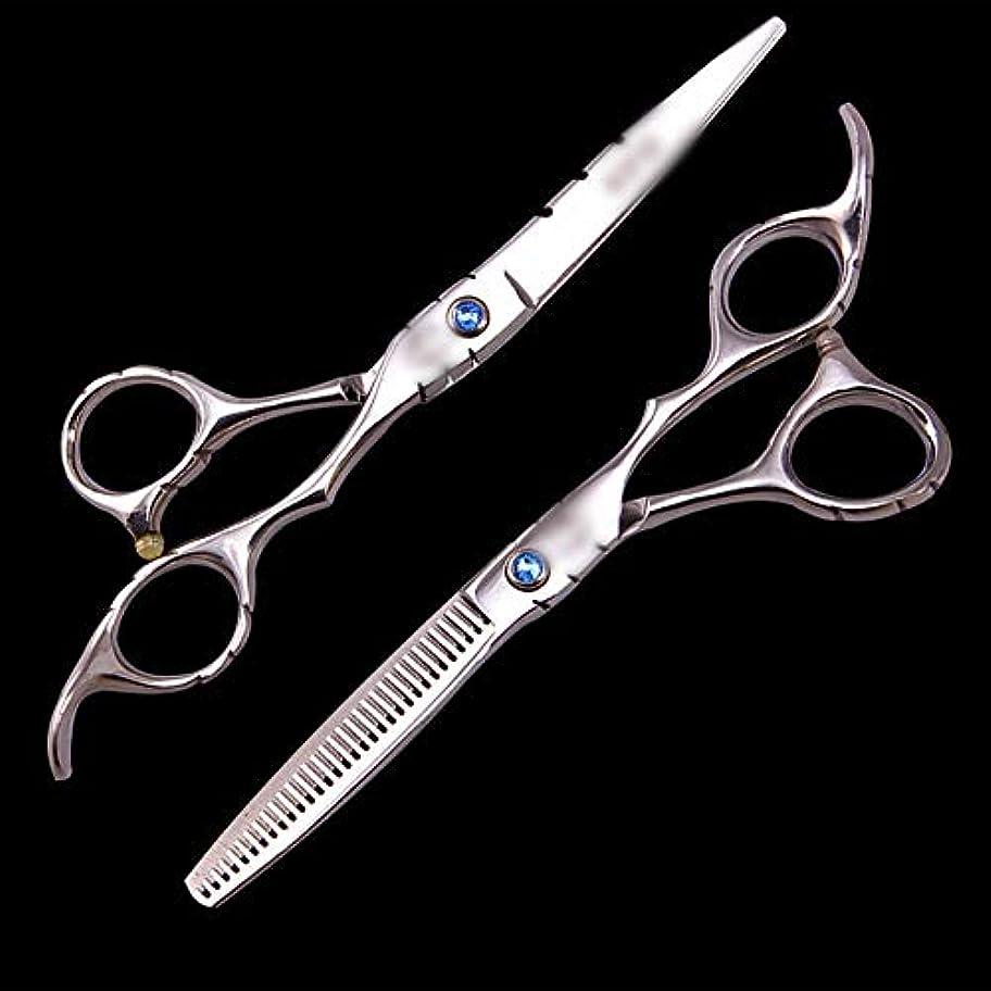 拒絶予報バーゲンWASAIO プロフェッショナル理容サロンレイザーエッジツールの歯のはさみセット理髪テクスチャーシザー美容スーツコンビネーション6インチの薄毛クリッピングはさみ (色 : Silver)
