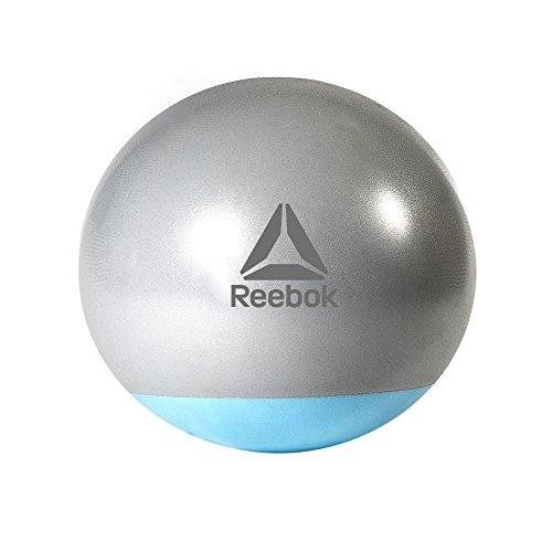 Reebok(リーボック) エクササイズ ジムボール 65cm ツートン RAB-40016BL DVD付