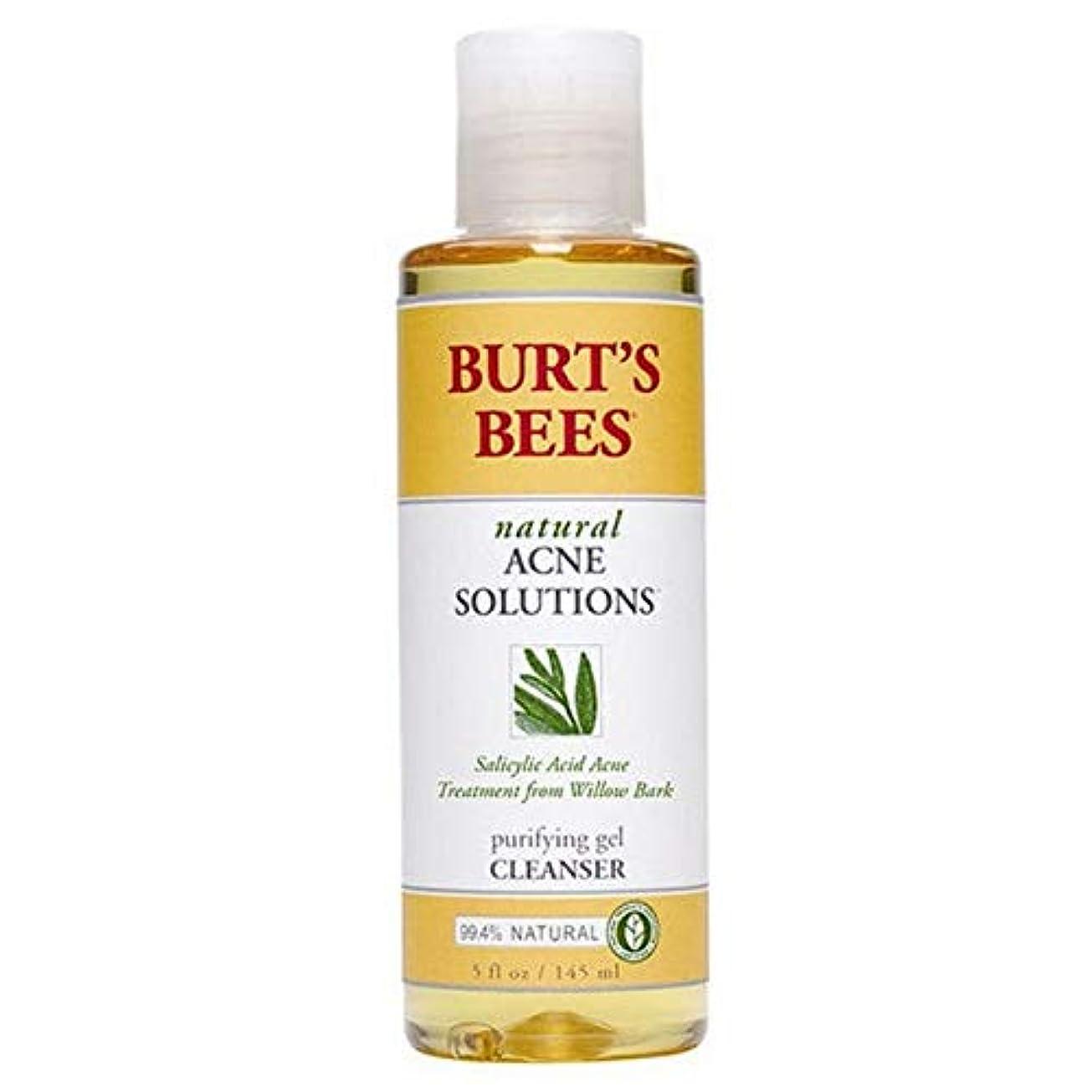 不潔立証するぐるぐる[Burt's Bees ] バーツビー反傷毎日クレンザー、145ミリリットル - Burt's Bees Anti Blemish Daily Cleanser, 145ml [並行輸入品]