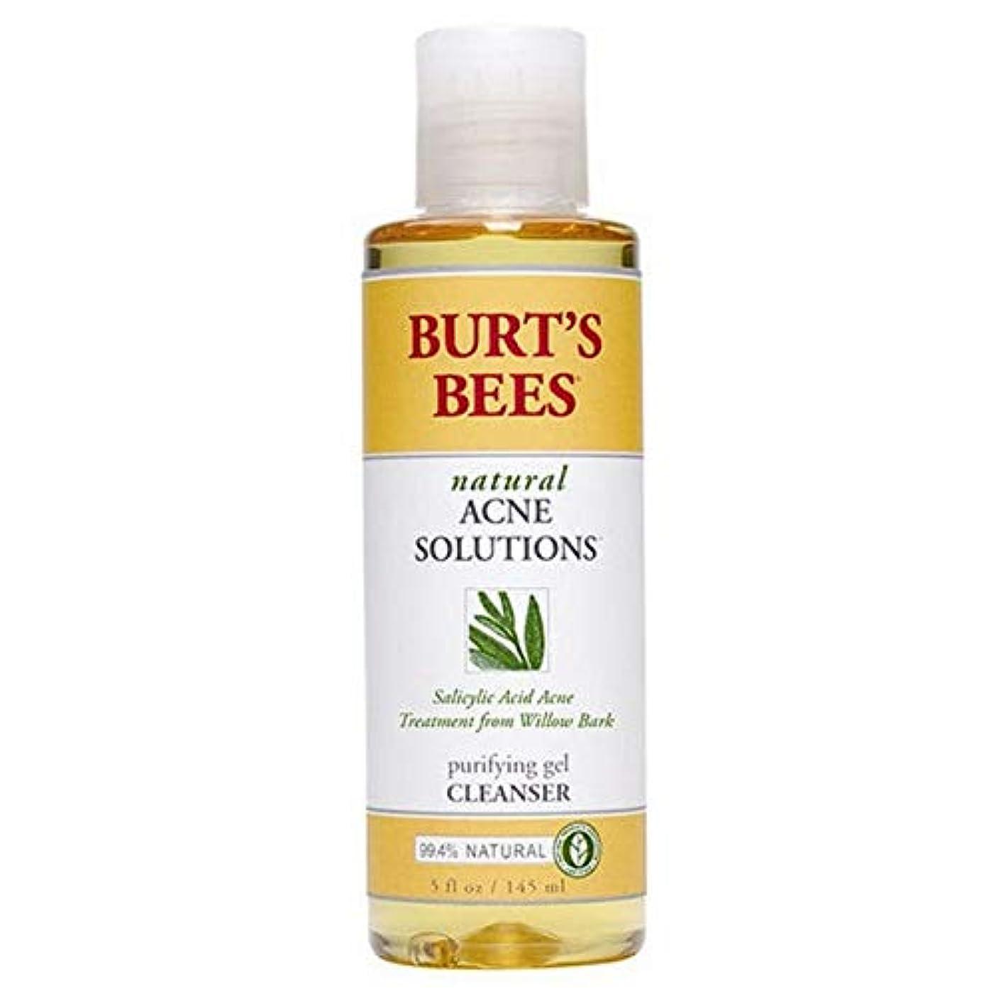 火山学見捨てられた道路[Burt's Bees ] バーツビー反傷毎日クレンザー、145ミリリットル - Burt's Bees Anti Blemish Daily Cleanser, 145ml [並行輸入品]
