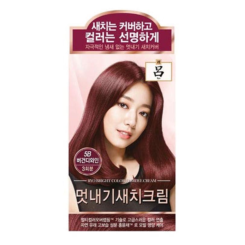消毒する以内にスラムアモーレパシフィック呂[AMOREPACIFIC/Ryo] ブライトカラーヘアダイクリーム 5B ブルゴーニュワイン/Bright Color Hairdye Cream 5B Burgundy Wine