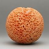 桃珊瑚<虫食い>32ミリ玉【3月 誕生石 珊瑚 さんご サンゴ コーラル sango coral 天然 本珊瑚 】