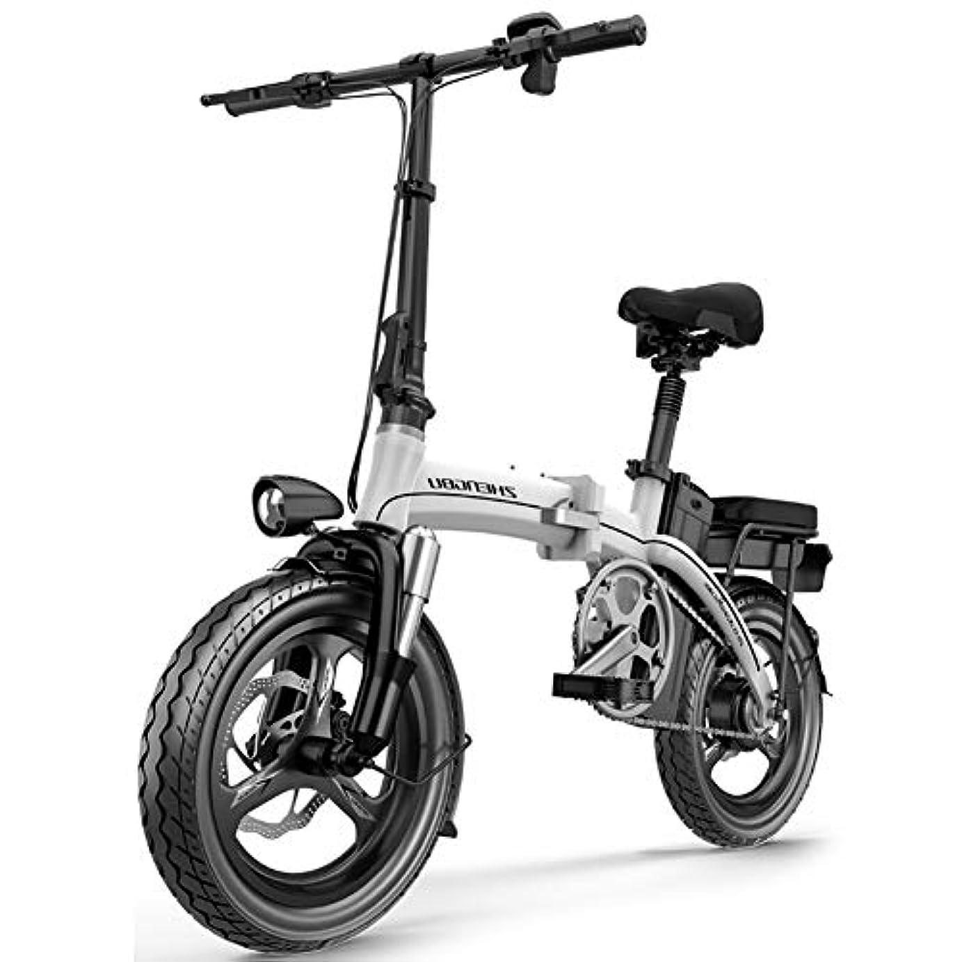 亜熱帯ウガンダ重荷大人用電動バイク、市都市通勤男性女性ティーンエイジャーのための適切なLCDディスプレイ付き折りたたみ自転車3モード12-23AH 400W 48V 14インチ