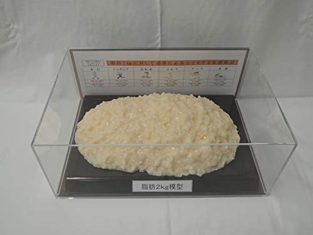 百年統治するデッド脂肪模型 フィギアケース入 2kg ダイエット 健康 肥満 トレーニング フードモデル 食品サンプル