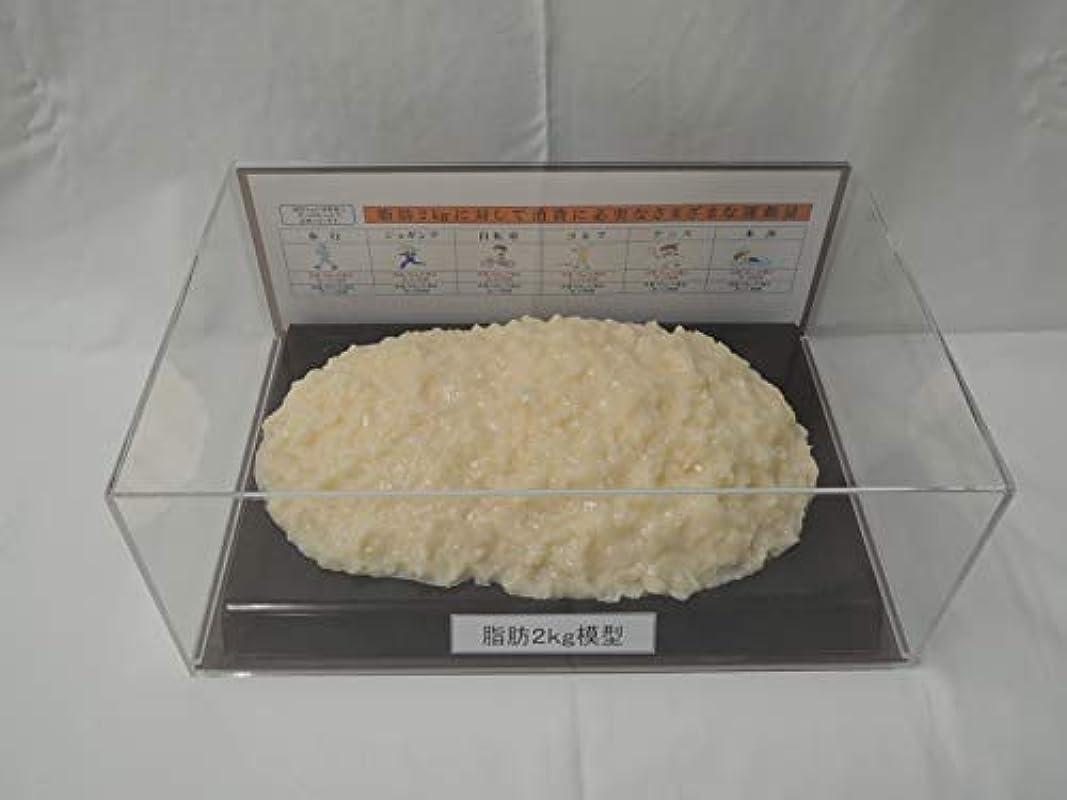 エステート選択センター脂肪模型 フィギアケース入 2kg ダイエット 健康 肥満 トレーニング フードモデル 食品サンプル