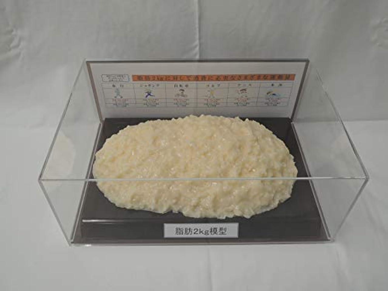 願望める本を読む脂肪模型 フィギアケース入 2kg ダイエット 健康 肥満 トレーニング フードモデル 食品サンプル