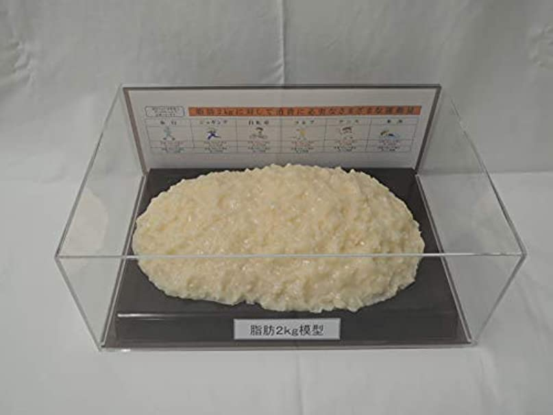 精神医学異議治療脂肪模型 フィギアケース入 2kg ダイエット 健康 肥満 トレーニング フードモデル 食品サンプル